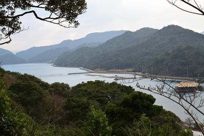青海島さくらの里からの眺望3.jpg