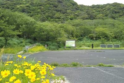 青海島さくらの里と季節の花2.jpg