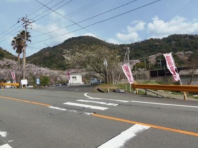 青海島さくらの里入口.jpg