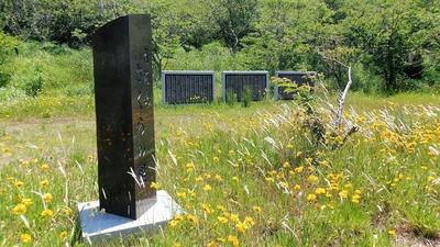 青海島さくらの里石柱と桜オーナー碑.jpg