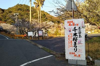 青海島さくらの里駐車場入口.jpg