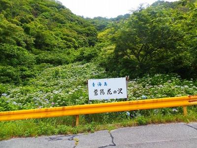 青海島・紫陽花の沢1.jpg