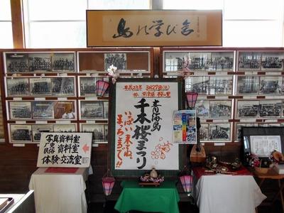 青海島千本桜まつり6.3.23.jpg