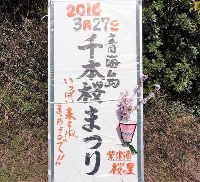青海島千本桜まつり案内版.jpg