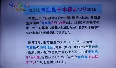 青海島千本桜まつり趣旨.jpg