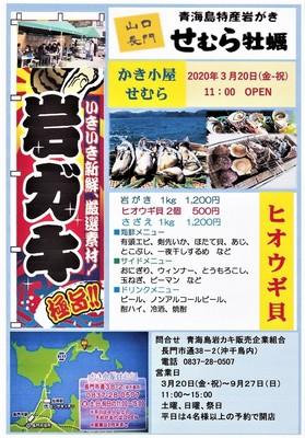 青海島岩がき「かき小屋せむら」オープン.jpg