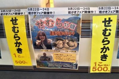 青海島岩がき「せむらかき」1.jpg