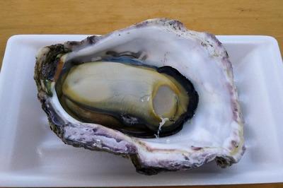 青海島岩がき「せむらかき」3.jpg