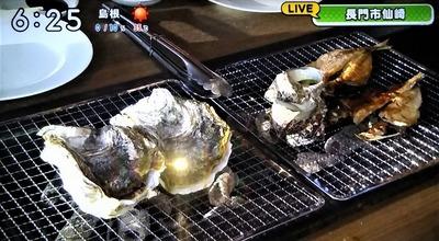 青海島岩がき・サザエ・瀬付アジ.jpg