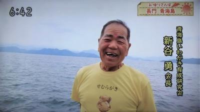 青海島岩がき育成研究会・新谷会長.jpg