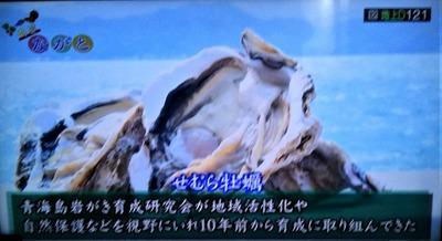 青海島岩がき育成研究会設立目的.jpg