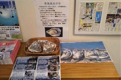 青海島岩ガキ.jpg