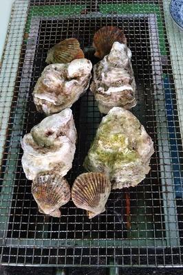 青海島産岩がき2.jpg
