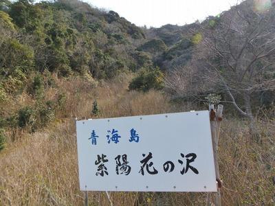 青海島紫陽花の沢.jpg