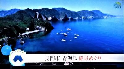 青海島絶景めぐり.jpg