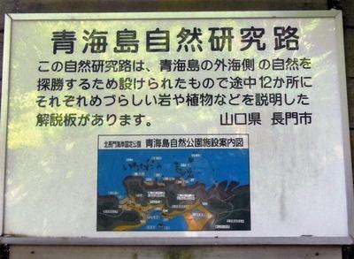 青海島自然研究説明.jpg