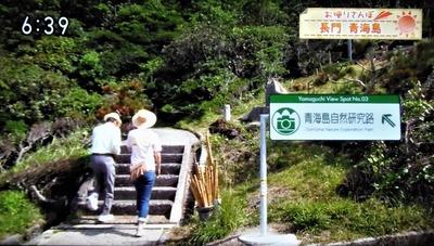青海島自然研究路スタート地点.jpg