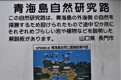 青海島自然研究路案内1.jpg
