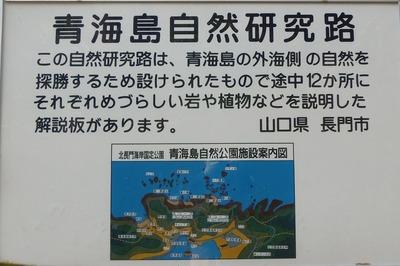 青海島自然研究路案内板2.jpg