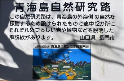 青海島自然研究路説明1.jpg