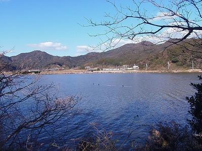 青海湖.jpg