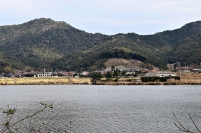 青海湖と青海地区.jpg
