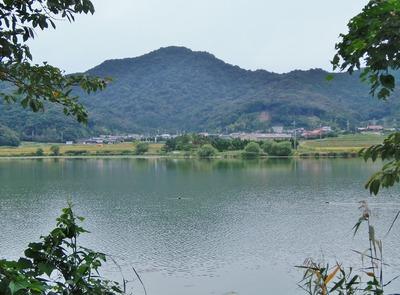 青海湖と青海地区1.jpg