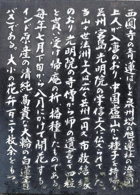 青蓮説明碑2.jpg