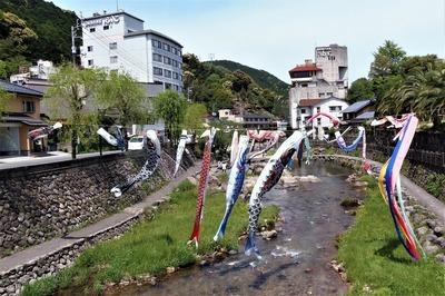 音信川とこいのぼり.jpg