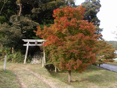 須賀社の紅葉2.jpg