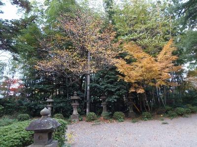 飯山八幡宮の秋色.jpg