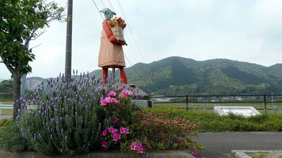香月ロードおもちゃの大行進の季節の花1.jpg