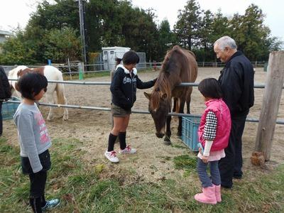 馬との触れ合い2.jpg