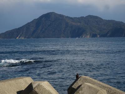 高山と鳥.jpg