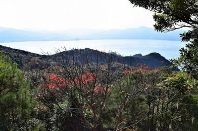 高山の秋色7.jpg