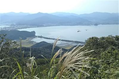 高山山頂からの眺望ススキとトンボ.jpg