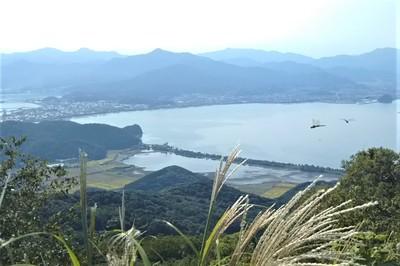 高山山頂からの眺望・トンボ.jpg