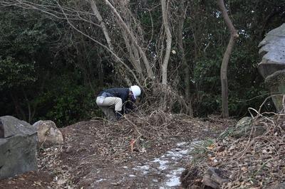 高山山頂傍の新設歩道周辺の抜き伐り3.jpg