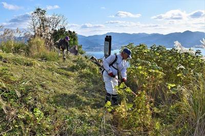 高山山頂草刈.jpg