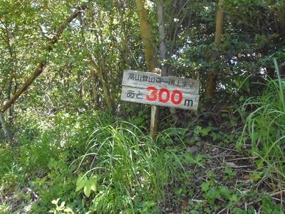 高山登山道・頂上まであと300m.jpg