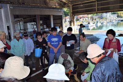魚市場の競り1.jpg