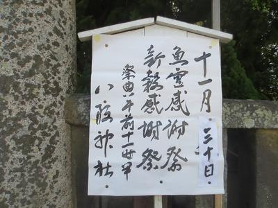 魚霊感謝祭・新穀感謝祭案内.jpg