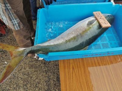 鮮魚大物.jpg