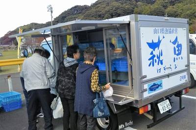 鮮魚販売.jpg