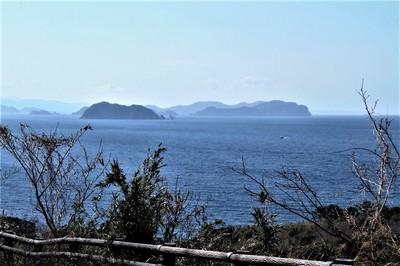 鯖島と青海島.jpg