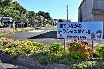 黄波戸さざなみ花壇2.jpg