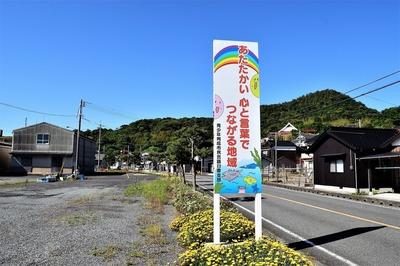 黄波戸さざなみ花壇4.jpg