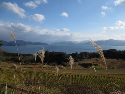 黄波戸高台からの眺望.jpg
