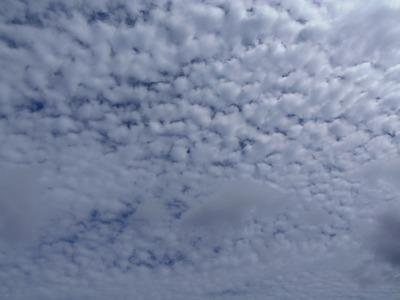 10月の秋の空1.jpg