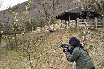 NHK山口取材.jpg